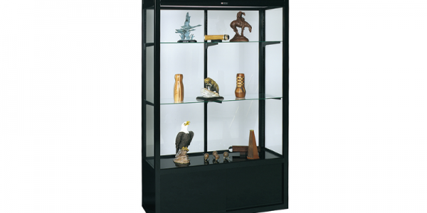 748 stand alone display case