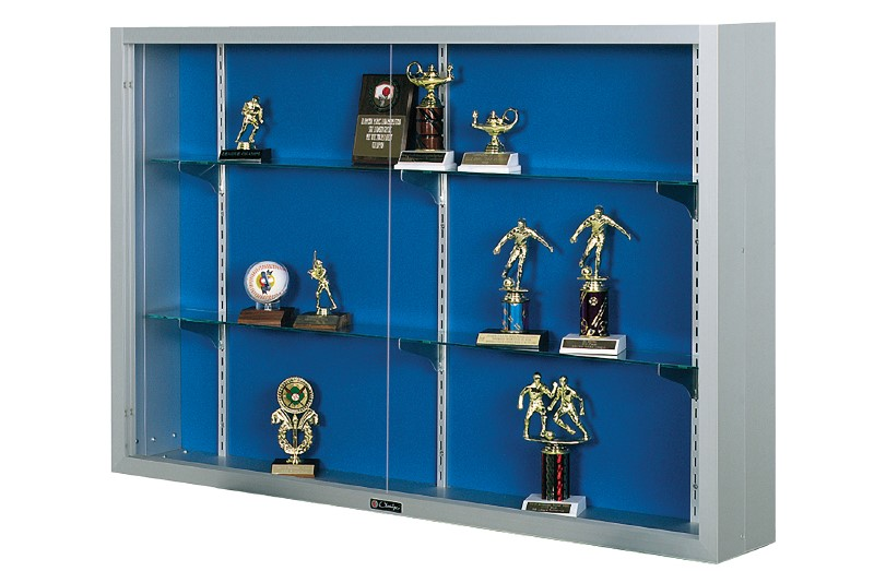 display case, trophy case, surface mounted