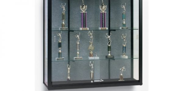 commercial display case, trophy case, wall mounted