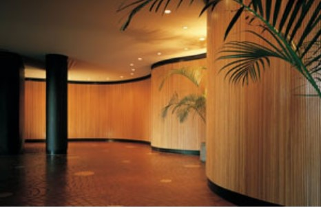 specialty interior finish products - tambour woodwork